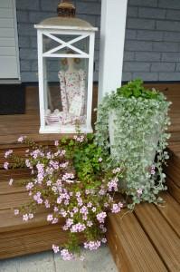 Naapurin kukka-asetelma.