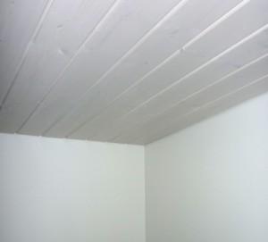 Katto ja seinät